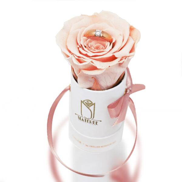 Rosenbox mit Ring, haltbare Rose